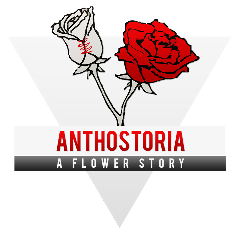 ANTHOSTORIA, a flower story
