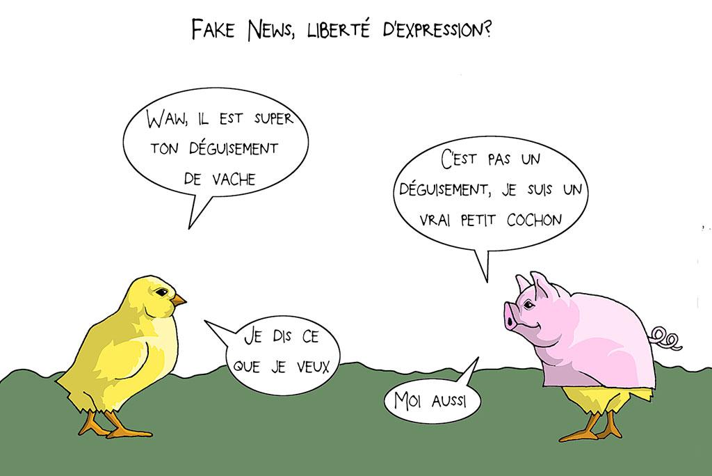 fake news, liberté d'expression