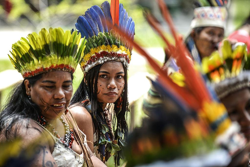 Au-delà de l'Amazonie, ces terres dévastées