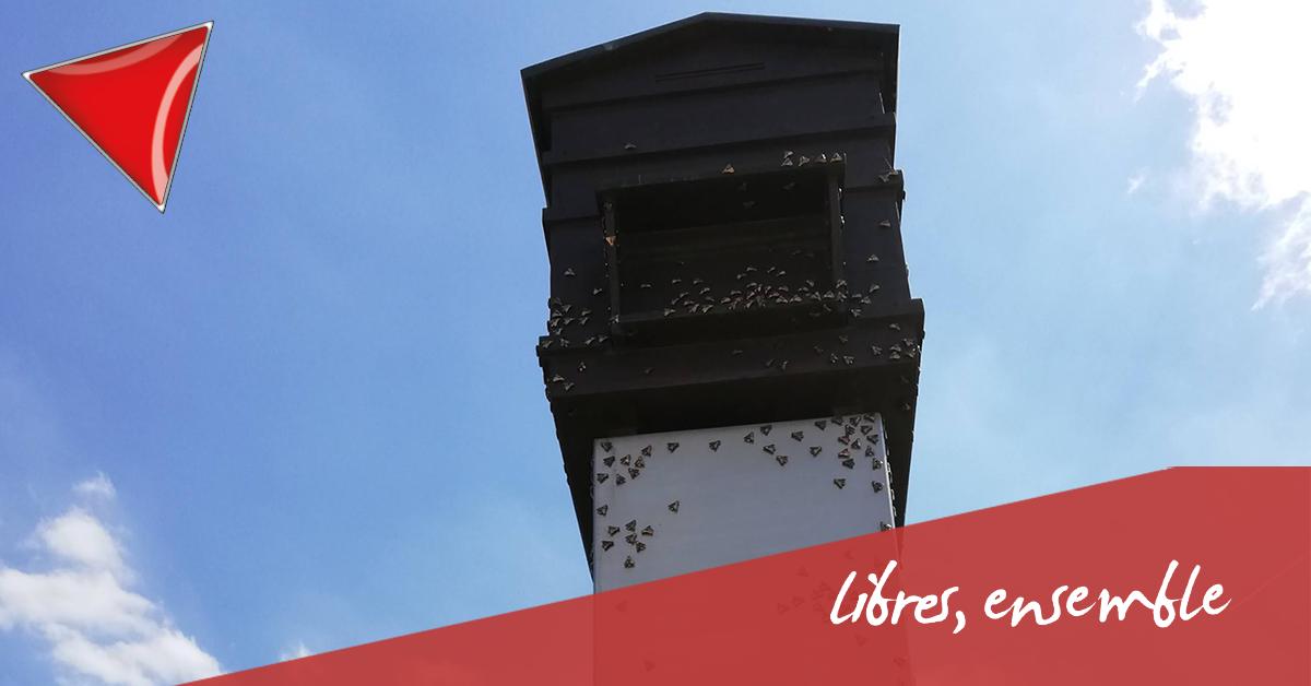 La « ruche » de Zedelgem: une insulte à la mémoire des victimes du nazisme